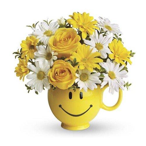 Primeros En Flores Envia Flores En El Mismo Dia En Usa Y Canada