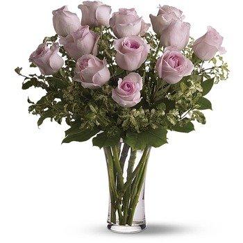 Una Docena de Rosas Rosadas