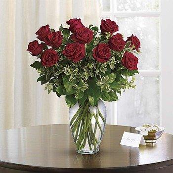 Siempre en mi Mente - Rosas Rojas de Tallo Largo