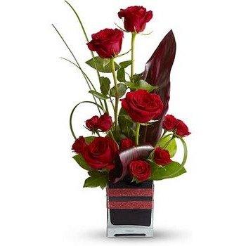 Rosas Romance