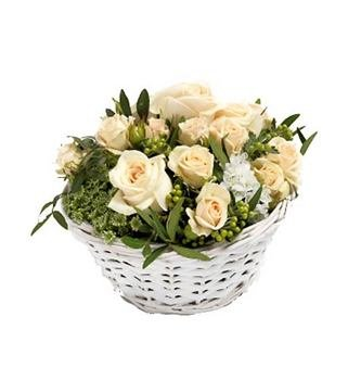 Jardín de Rosas Blancas
