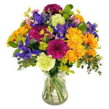 Saludos de Flores Pintoresco (Jarrón no incluido)