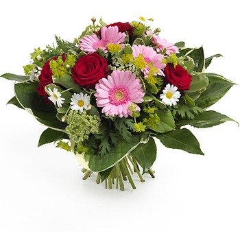 Favoritas Flores