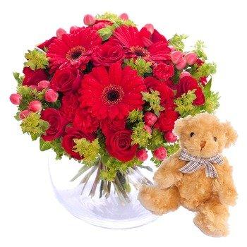 Abrazo de felicidad en rojo con osito de peluche (florero no incluido)