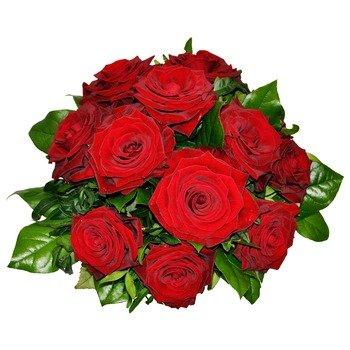 12 Rosas Tentadoras