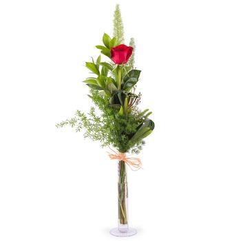 1 Rosa Roja de Tallo Largo