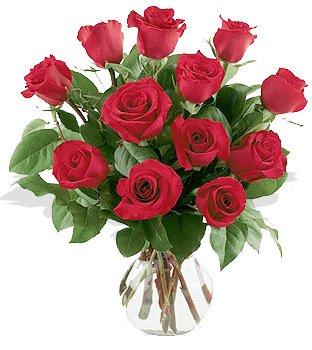 Una docena de Rosas Arregladas en Florero